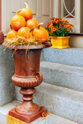 Pumpkins in urn fall outdoor decorating ideas